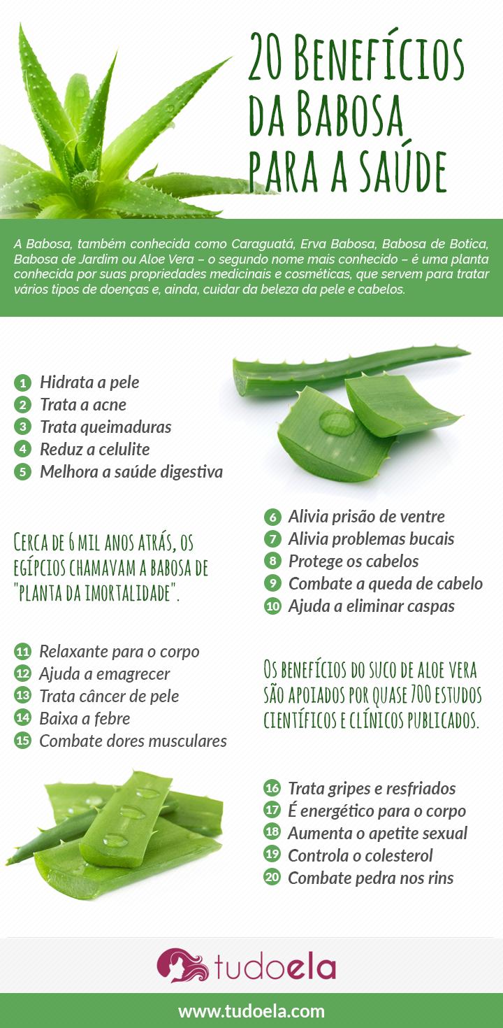 Infográfico Babosa: benefícios para a saúde