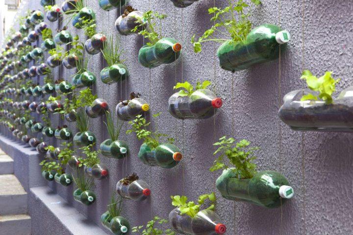 jardim-suspenso-garrafa-pet