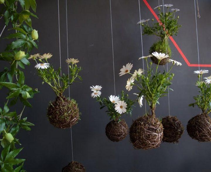 jardim-suspenso-pendulo