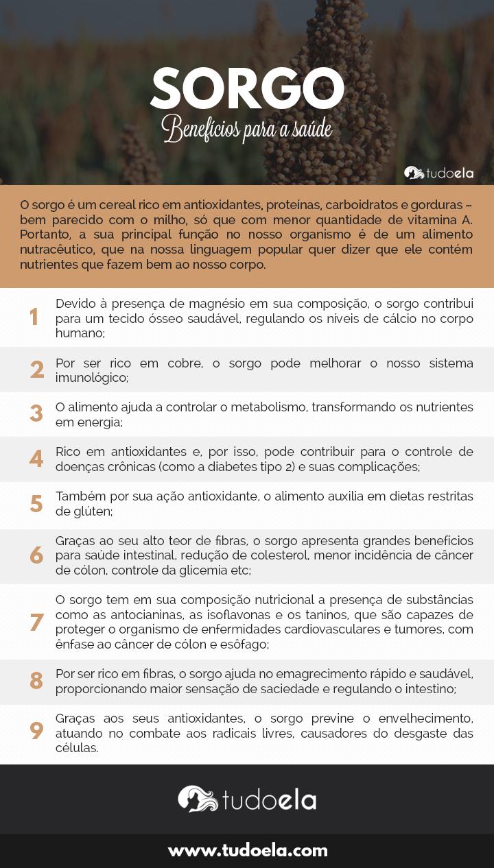Sorgo infográfico: Benefícios do sorgo para a saúde