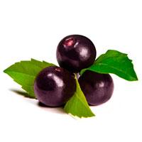 Açaí Berry