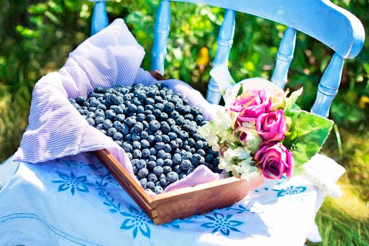 Berries essenciais para a saúde