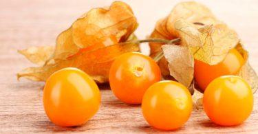 Golden Berry benefícios
