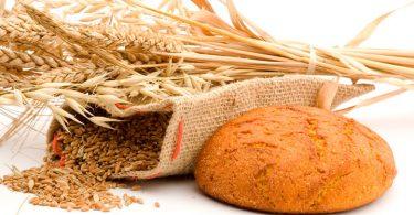 Malefícios do trigo