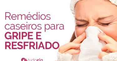 Remédios caseiros para gripe e resfriado