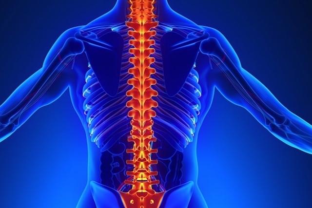 5-sintomas-da-osteoporose-1-1-640-427
