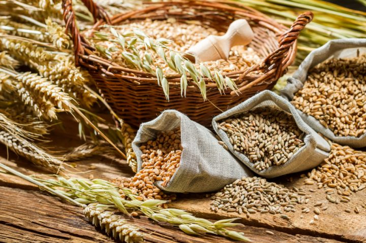 Different types of cereal grains with ears