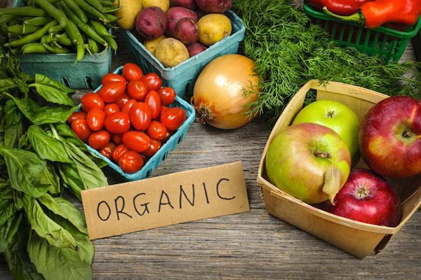 comida-organica-alimentos-organicos-como-comprar-sites-online-compra-de-legumes-organicos-dicas