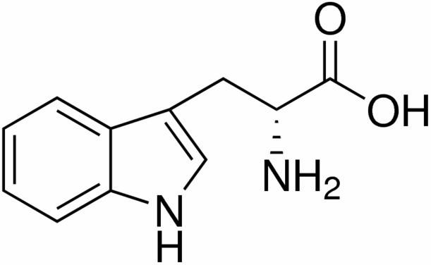 triptofano-2