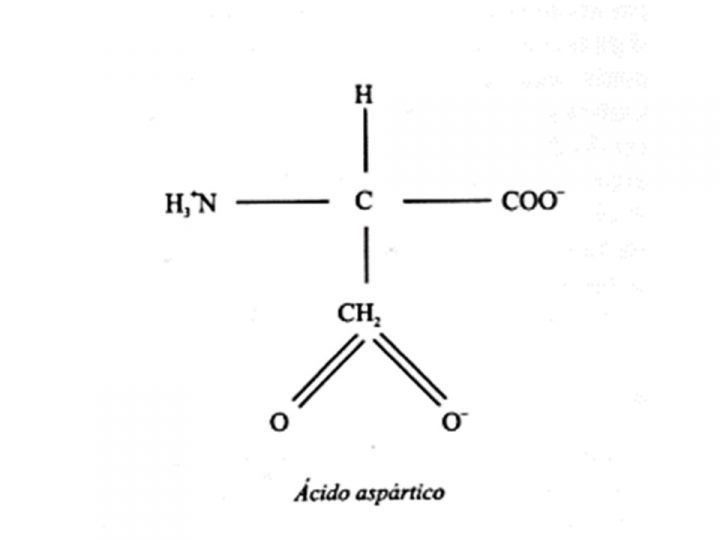 acido-aspartico