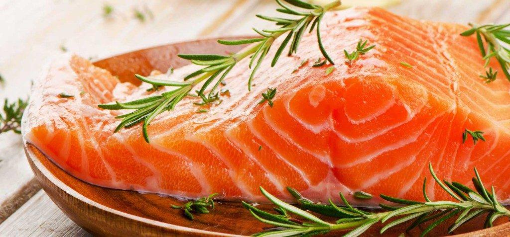salmão-1024x477