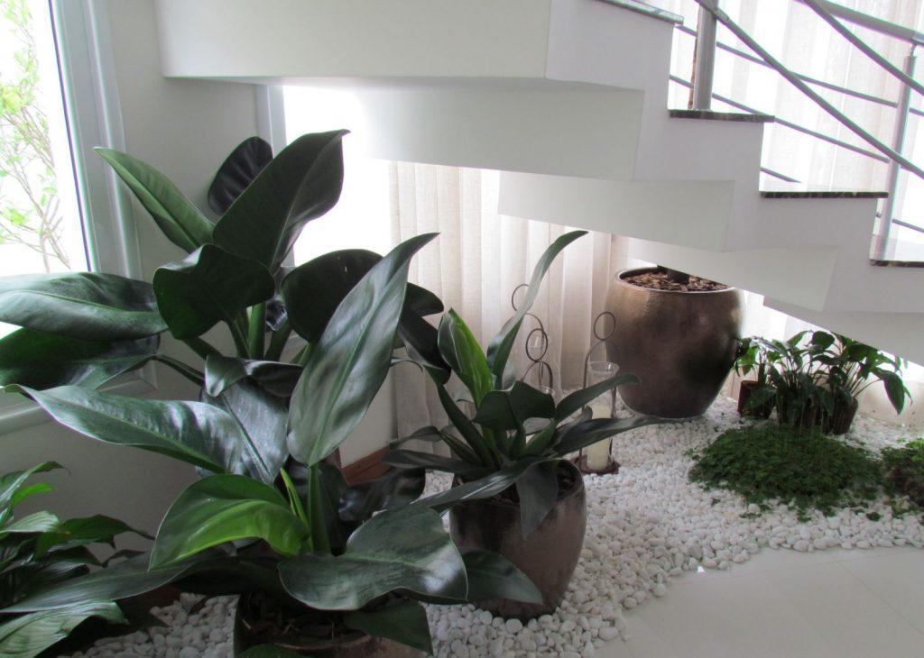 jardim-inverno-embaixo-escada-5