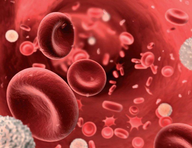 Anemia: Sintomas, causas e tratamentos