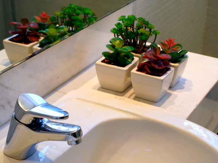 Decoração com suculentas banheiro