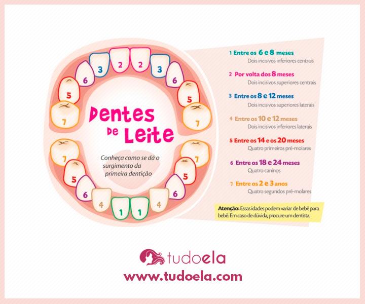 Dentes do bebê: ordem de nascimento