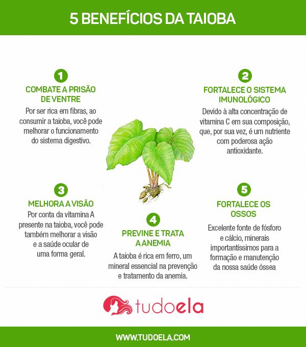 Taioba infográfico