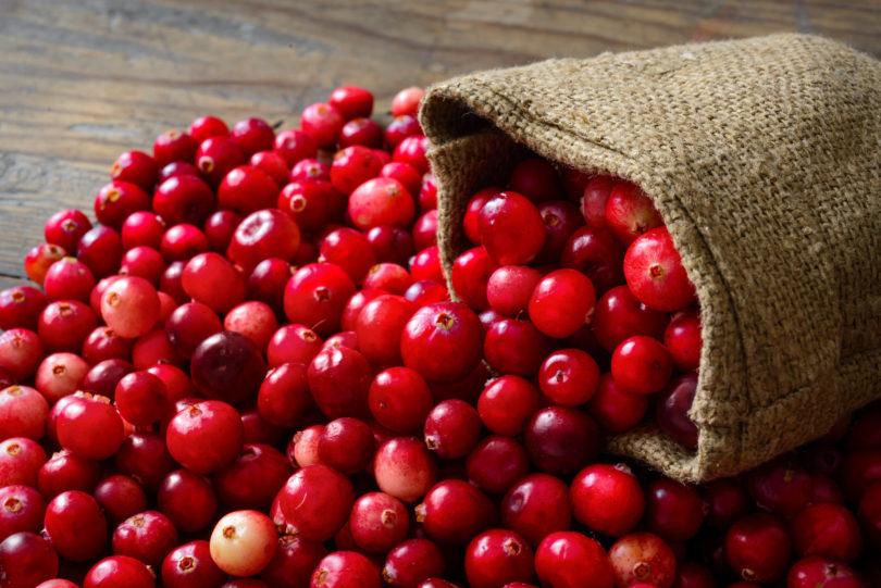 CRANBERRYLIFT Essential Nutrition 20 sachês de 5g-3