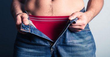 Função dos testículos