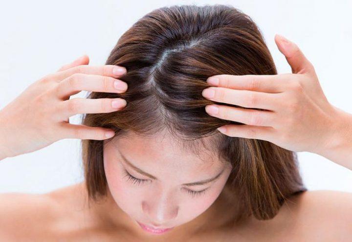 Benefícios do hibisco para o cabelo