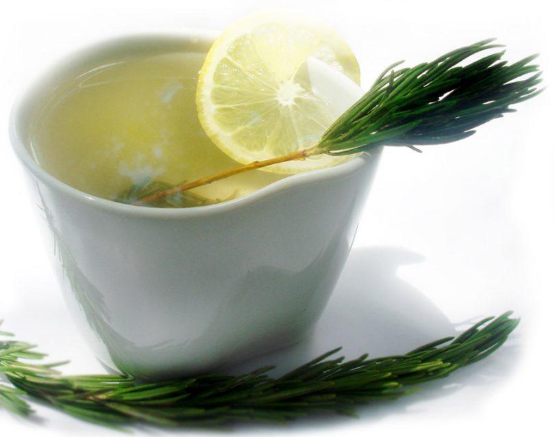 Chá de alecrim benefícios