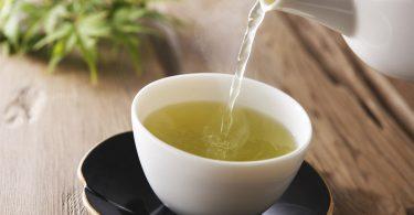 Chá de capim-santo