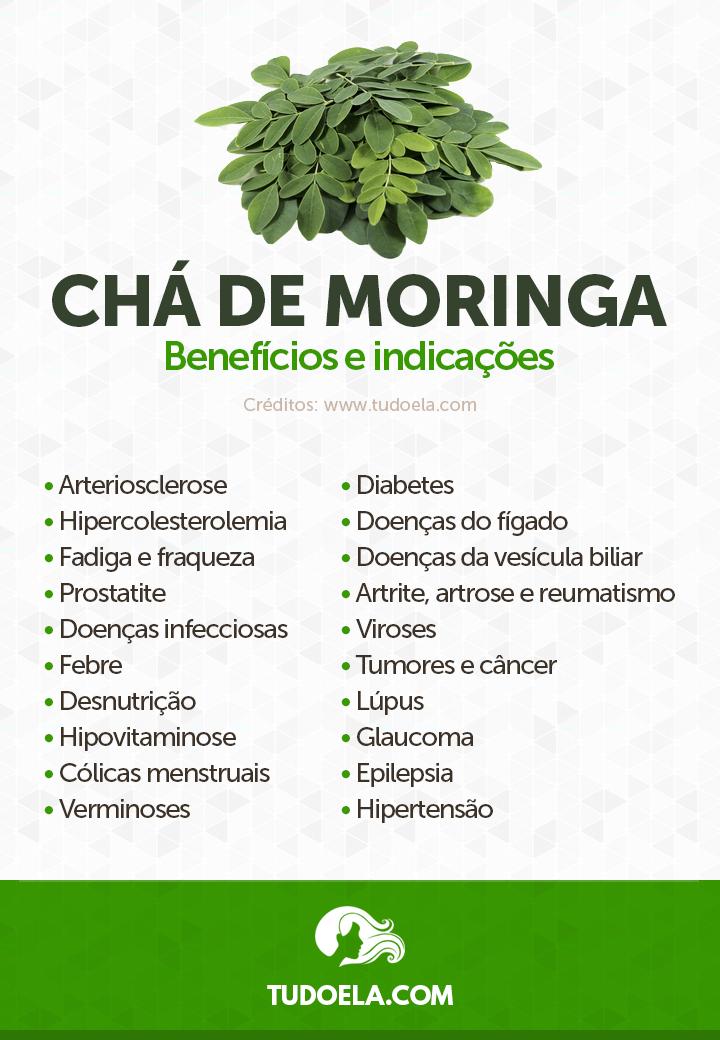 Chá de Moringa: benefícios para a saúde e indicações [Infográfico]