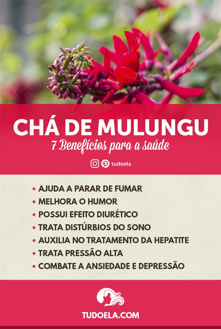 Chá de Mulungu: 7 benefícios para a saúde [Infográfico]