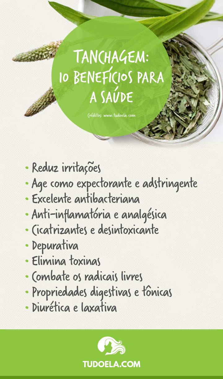 Chá de Tanchagem: benefícios para a saúde [Infográfico]