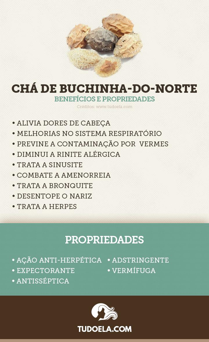 Chá de Buchinha-do-Norte: benefícios para a saúde e propriedades [Infográfico]