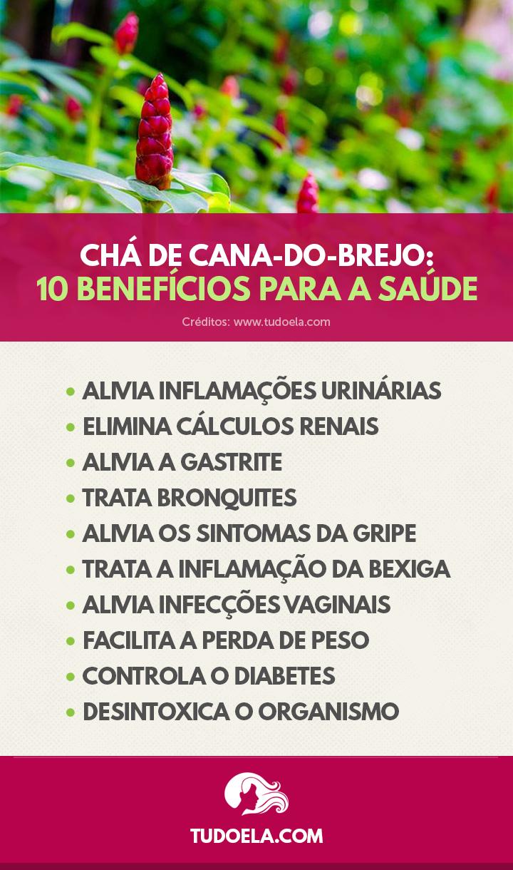 Chá de Cana-do-Brejo: benefícios para a saúde [Infográfico]