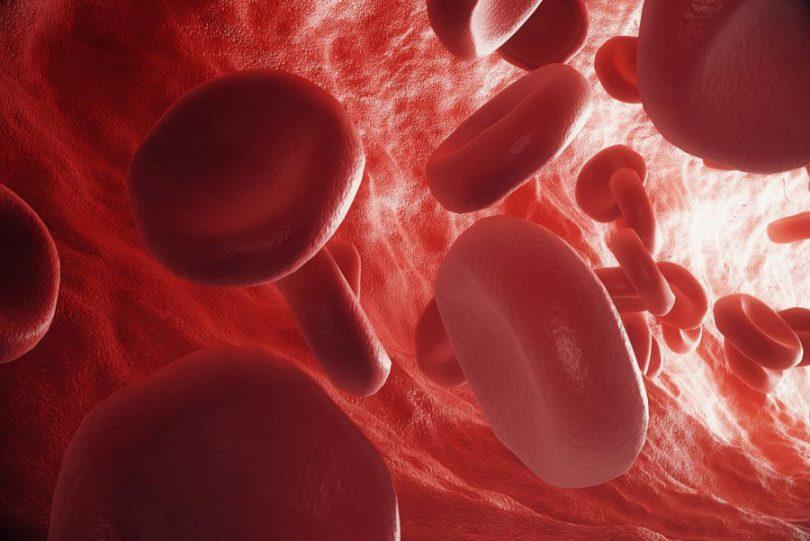 Remover impurezas do sangue