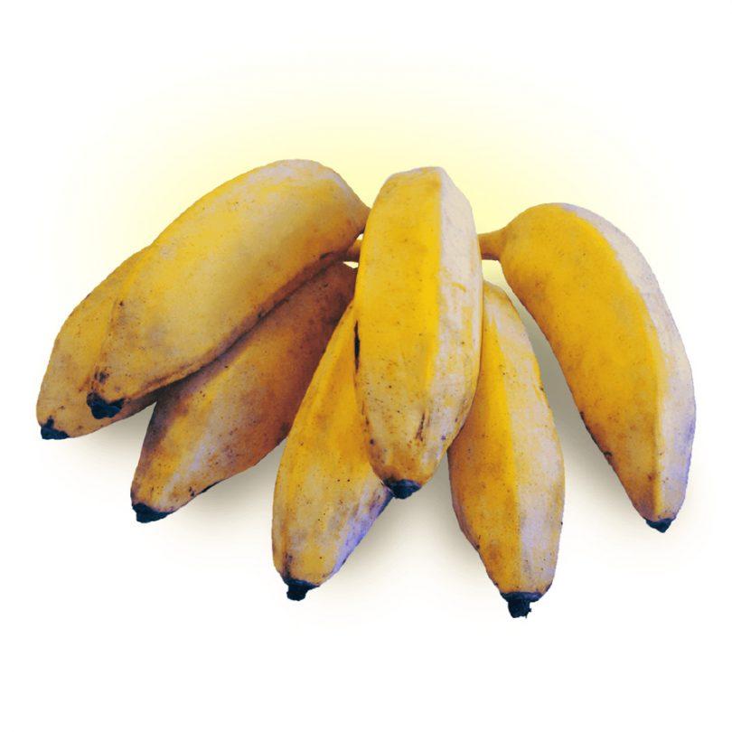 Banana figo